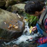 miernik jakości do wody